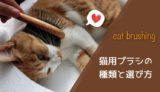 猫用ブラシ