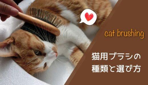 トリマーがおすすめする猫用ブラシの種類と選び方|短毛種・長毛種別に解説
