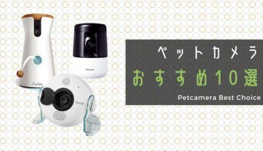 猫の留守番見守り用監視ペットカメラおすすめ10選!選び方や口コミも紹介