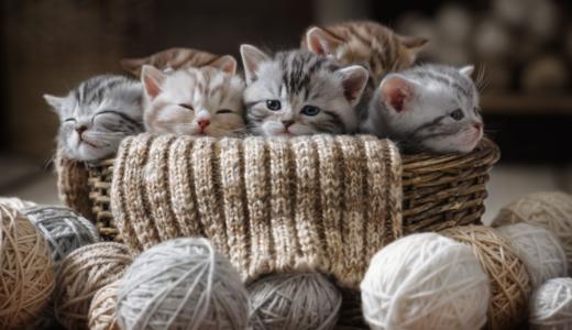 ふるさと納税で猫殺処分ゼロ!動物愛護や保護活動に寄付できる自治体一覧