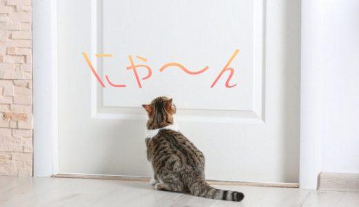 猫が外に出たがるのはなぜ?理由や対策、ストレスで鳴く時の対処方法も