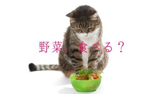 猫が野菜を食べるのは大丈夫?食べていい野菜と危険な野菜をわかりやすく!