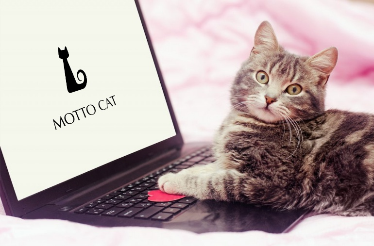 MOTTO CAT,ライター募集