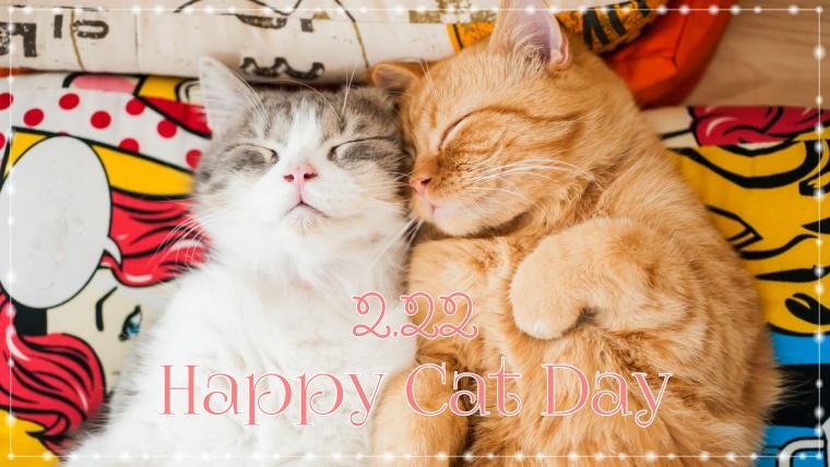 猫の日イベント2019東京まとめ