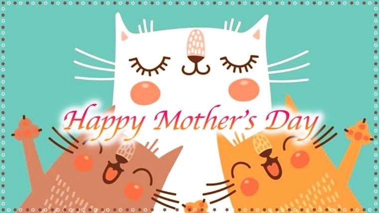 猫,母の日,プレゼント