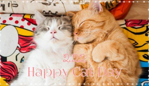 猫の日イベント2019(2月22日)|関西(大阪・神戸)で開催される猫イベント一覧