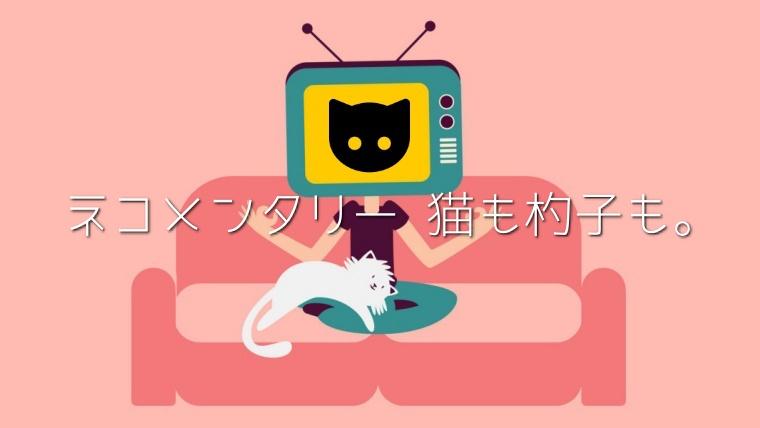 ネコメンタリー猫も杓子も,再放送,見逃し