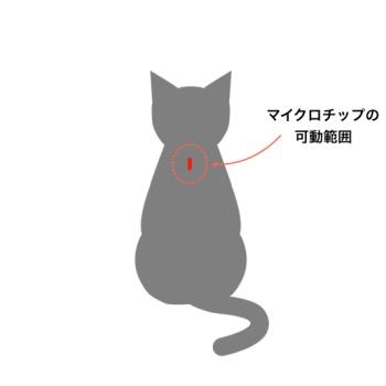 猫,マイクロチップ