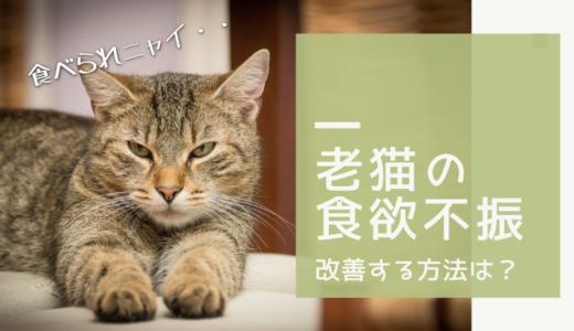 老猫が何日も餌を食べない!高齢猫の食欲不振を改善する方法は?
