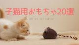 子猫用おもちゃのおすすめ
